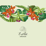 Vector drawn floral collection with tropical leaves and flowers. Exotic collection.