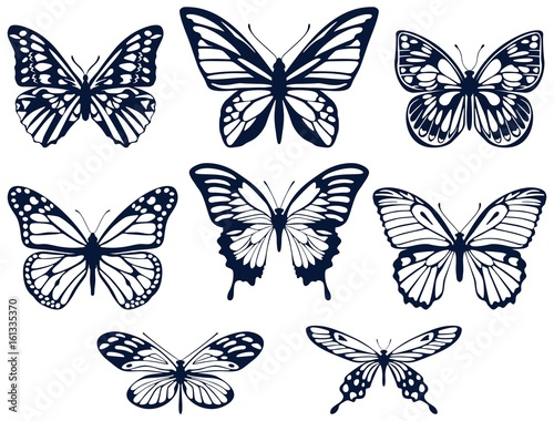 Foto op Plexiglas Vlinders in Grunge Collection of silhouettes of butterflies. Butterfly icons. Vector illustration.