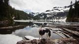 Exploring the Pacific Northwest, Washington State