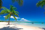 beautiful beach and tropical sea - 161421743