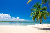 beautiful beach and tropical sea - 161422963