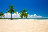 beautiful beach and tropical sea - 161422999