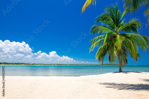 Papiers peints Tropical plage beautiful beach and tropical sea