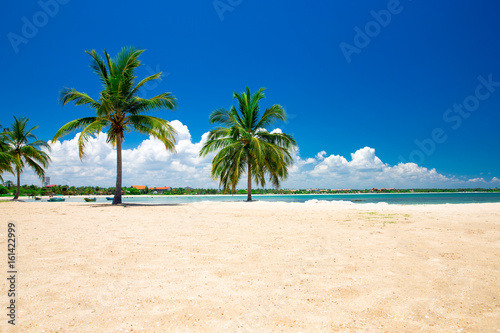 beautiful beach and tropical sea - 161422999