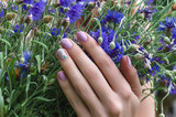 Female hands with lilac nail design.