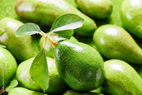 Closeup view of ripe avocado at market
