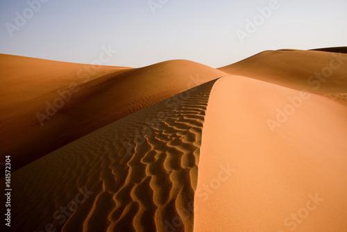 Deurstickers Abu Dhabi Desert Art