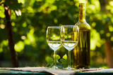 Two glasses of white wine on table