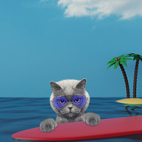 Cute cat surfing on a surfboard at the ocean near the beach