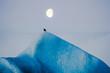 bird and moon on glacier