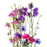 Bouquet of garden flowers isolated on a white background