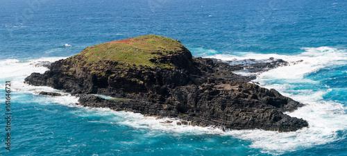 Bird sanctuary at Kilauea Lighthouse