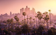 Leinwanddruck Bild - Beautiful sunset of Los Angeles downtown skyline and palm trees in foreground