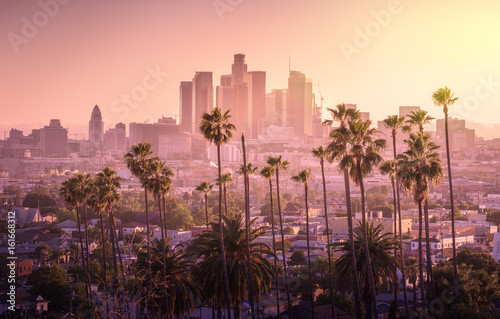 Poster Beautiful sunset of Los Angeles downtown skyline and palm trees in foreground