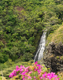 Opaekaa Falls in Hawaiian island of Kauai