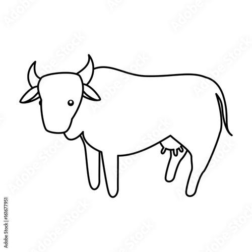 Cow farm animal icon vector illustration graphic design - 161677951