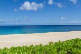 Tropical sandy beach in Hawaii