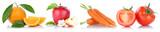 Obst und Gemüse Früchte Apfel Karotten Möhren Tomaten Freisteller freigestellt isoliert in einer Reihe