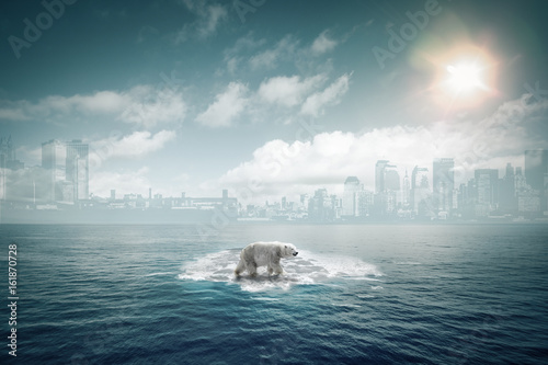 Aluminium Ijsbeer Ours polaire sur une petite banquise au milieu de l'océan