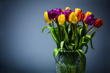 Bouquet of tulips on a blue background