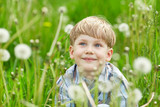 Young blond boy in a meadow with dandelions