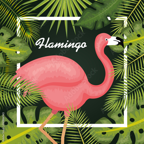 Pink flamingo with tropical leaves and white frame over green background vector illustration