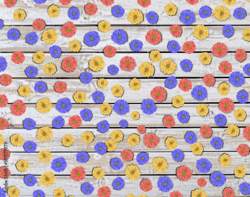 Lot of colorful daisy flower on wooden table