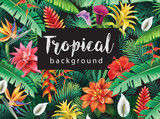 Background from tropical flowers - 161955152