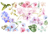 Beautiful watercolor set with orchids. Illustration - 161992145