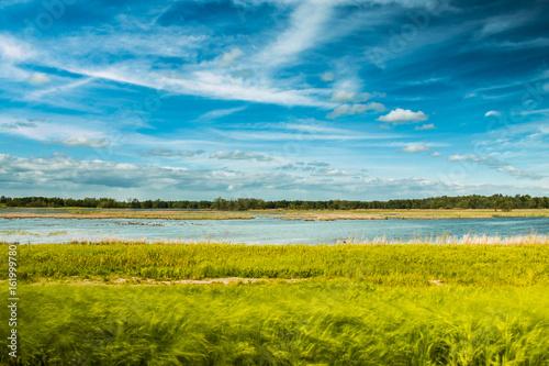 Wetlands and Sky