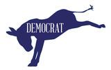 The Democrat Blue Donkey