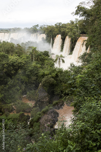 trees and waterfalls at upper part of iguazu falls veiw from argentina - 162047151