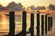 Levé de soleil sur Noirmoutier