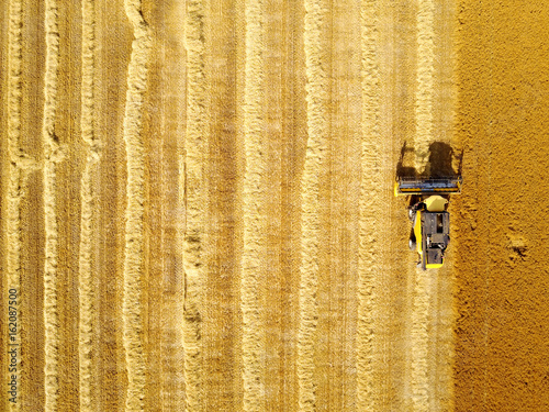 Aerial shot of yellow harvester working on wheat field.