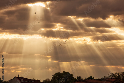 Rays of lights at sunrise with beautiful clouds and birds flying around.