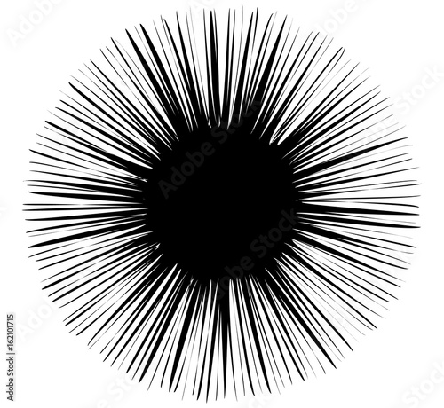 Abstract design element with radial lines. Circular shape in radiating fashion - 162101715