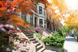 Brooklyn brown houses - 162108585