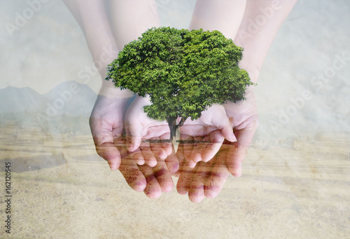 Save green environment with tree planting on family's hands over deforested landscape.