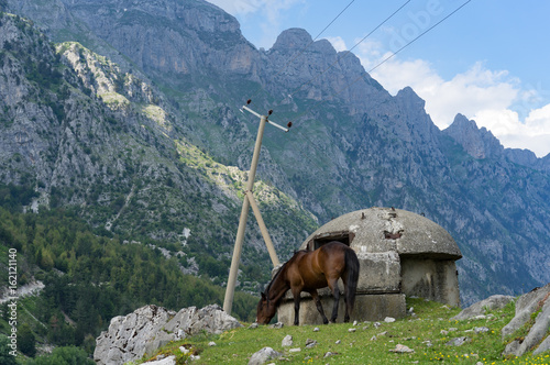 Albania: grassing horse and bunker in front of mountain scenery Poster
