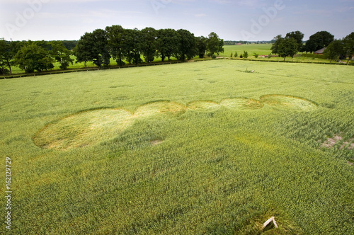 Foto op Canvas UFO Crop circle in a wheat field