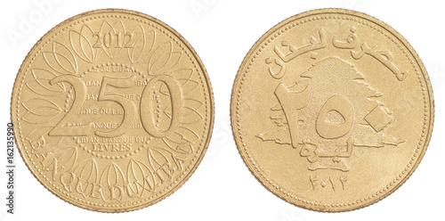 Poster Lebanese livres coin