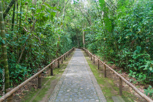 Path for visitors of an archeological park in San Agustin, Colombia