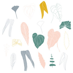 Vector illustration with hand drawn tropical leaves .