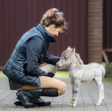HF NOBLE'S GULLIVER - world's smallest horse and his Owner. Tiny foal measuring just 31 cm tall. American miniature horse. - 162163193