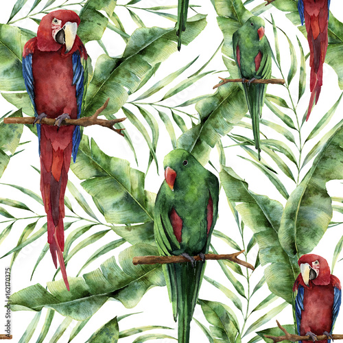 Watercolor seamless pattern with parrots, banana palm leaves and hibiscus. Hand painted red-and-green macaw, palm branch and flowers isolated on white background. Floral print with tropical bird - 162170375