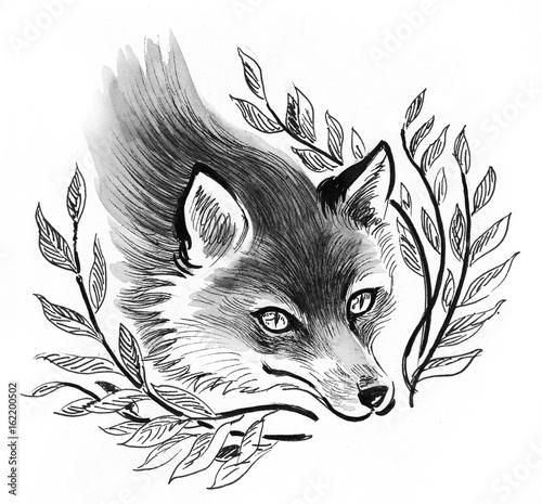Fox in the bush - 162200502