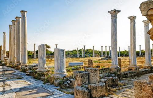 Salamis ruins , Cyprus Poster