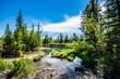 Griffith Woods Park
