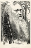 Charles Darwin as a wild man of the jungle. Date: 1873 - 162306700
