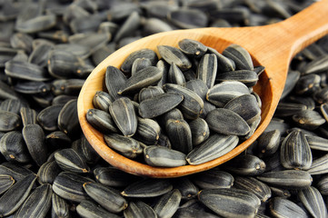 Sunflower seeds on wooden spoon on background